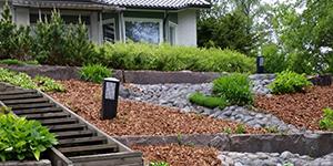 Viheralueet ja puutarhat